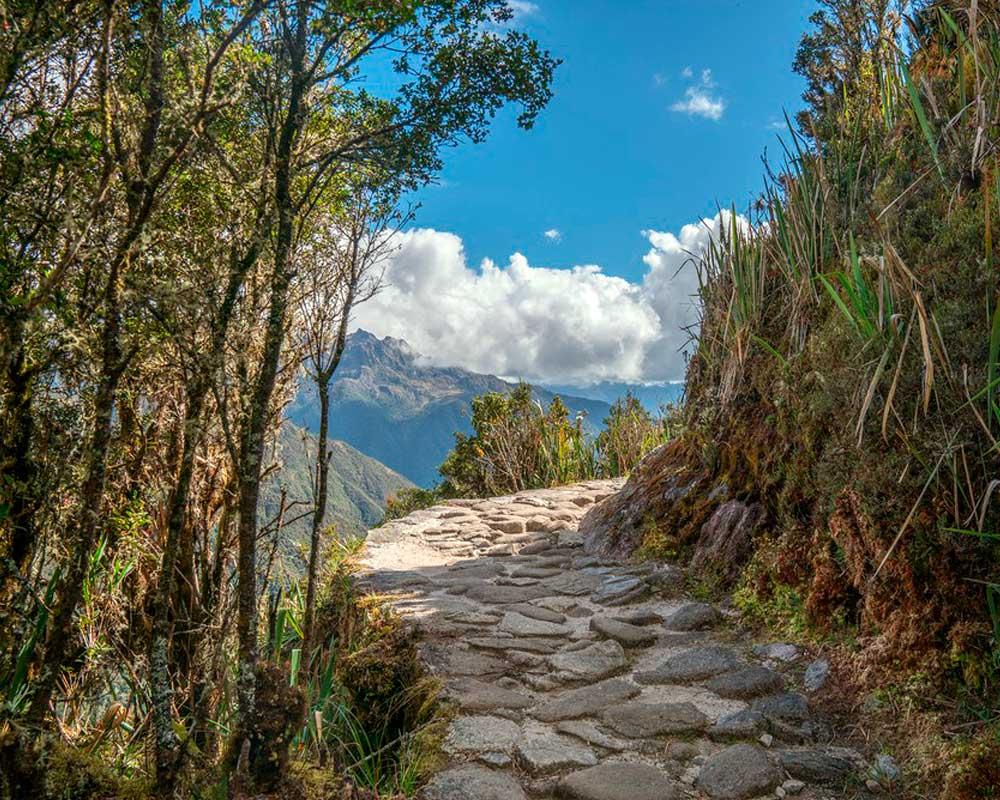 Salkantay Treks to Machu Picchu